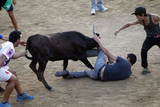 Two in hospital after Madrid bull-run