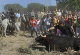 Thousands protest ahead of the sickening Toro de la Vega on Tuesday 16th